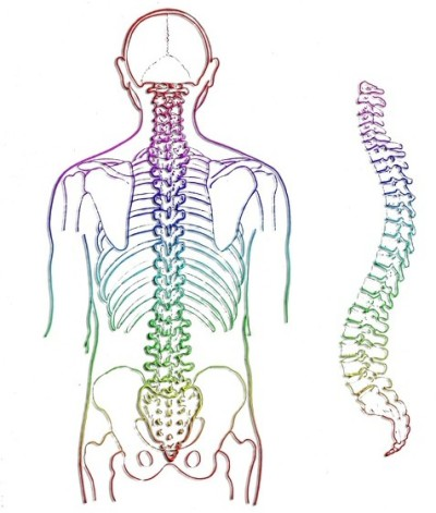 Spine image for structural rebalancing